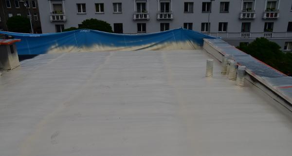 Crossin Roof